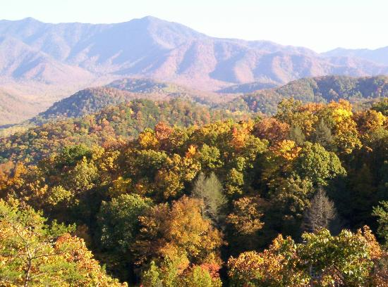 Gatlinburg, Τενεσί: Fall Leaves