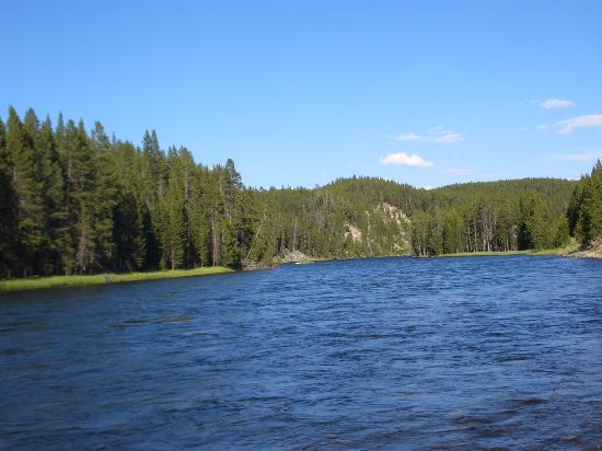 Yellowstone National Park, WY: river