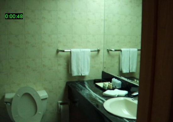 City Line Hotel (Harmony): Sink
