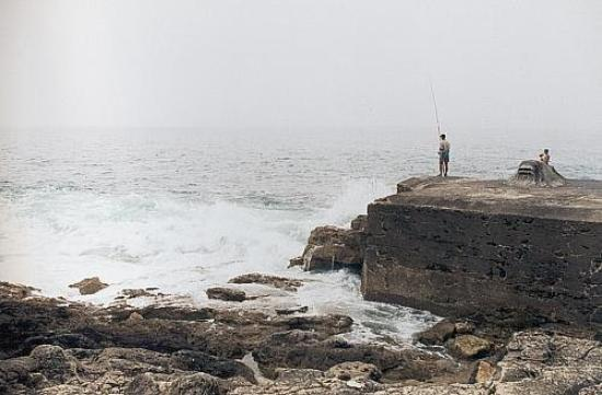 Fishing is Cascais Waters