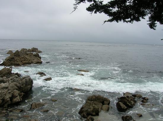 Monterey-billede