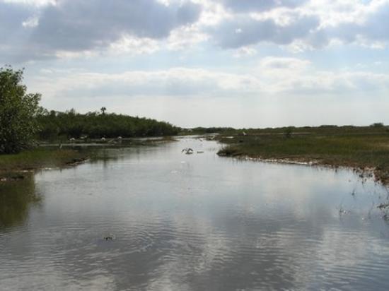 Fort Myers-bild