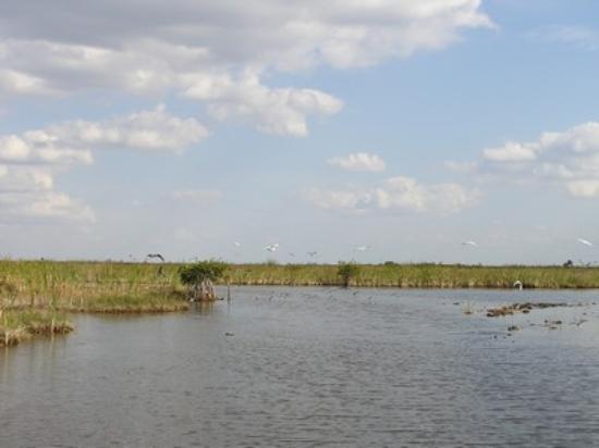 Fort Myers صورة فوتوغرافية