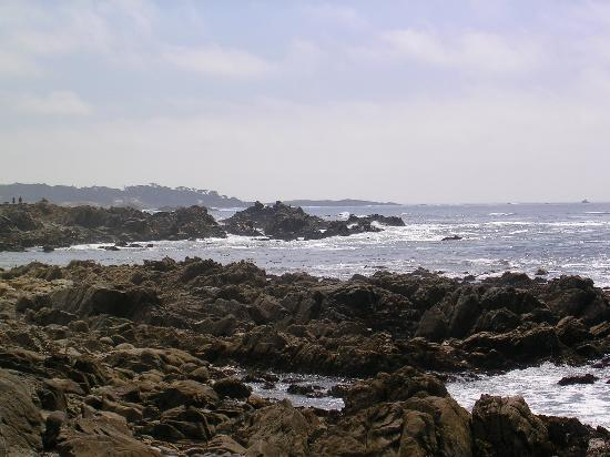 Monterey Peninsula, Californie : Coastline