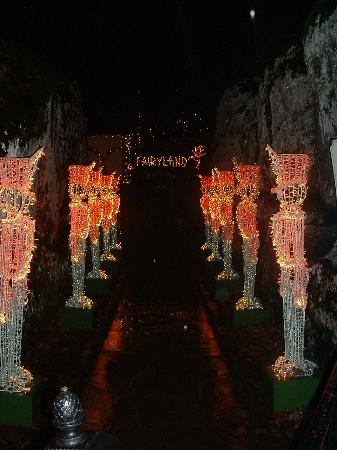 Christmas In Chattanooga Tn 2021 Rock City At Christmas Picture Of Chattanooga Tennessee Tripadvisor