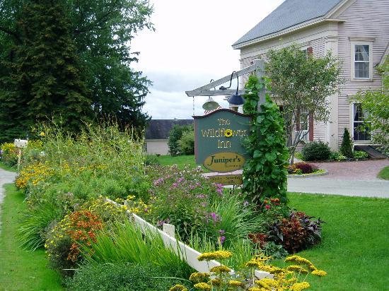 Wildflower Inn Foto