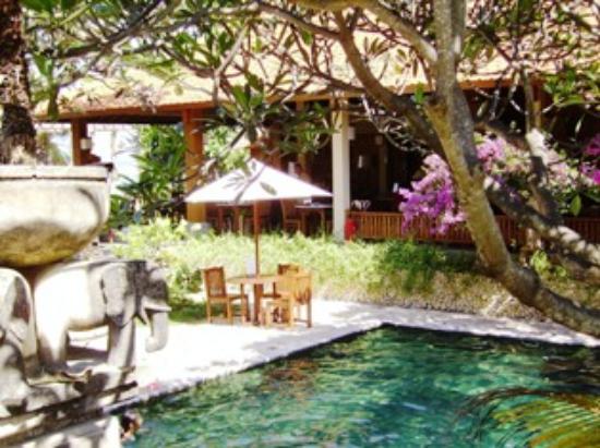 Besakih Beach Hotel: Pool at Besakih