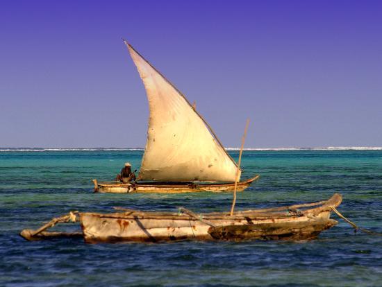Zanzibar, Tanzanya: sailboat