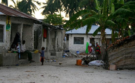 Zanzibar, Tanzania: village