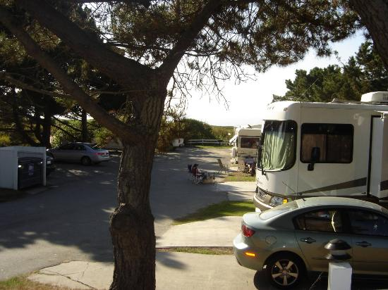 Pelican Point RV Park: Other Ocean View Spots