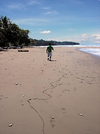 La Cusinga Eco Lodge: Our guide one the beach at La Cusinga... make sure you remember when high tide is!