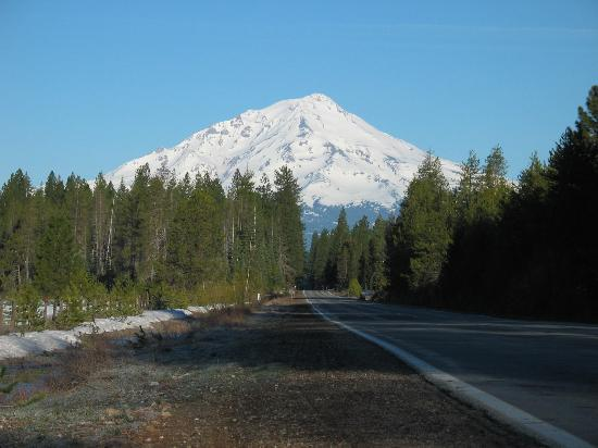 Shasta-Trinity National Forest: Mount Shasta from the south