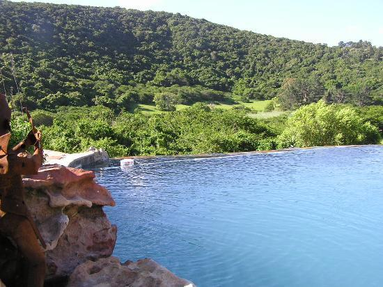 Thunzi Bush Lodge: View from the 'lazy lizard' swimming pool