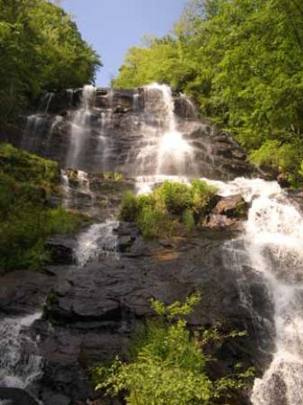 Amicalola Falls State Park: View of GA's highest falls from trail