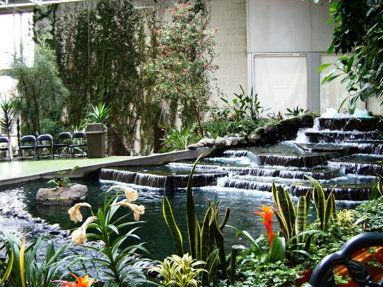Indoor garden picture of devonian gardens calgary for Indoor gardening videos