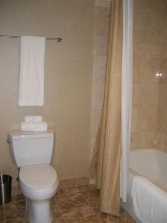 West Inn & Suites Carlsbad: Bathroom