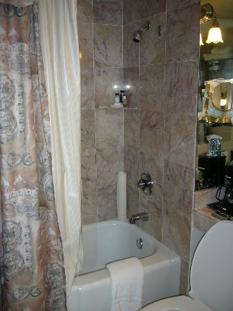 Dauphine Orleans Hotel: The shower with soft water and marginal water pressure