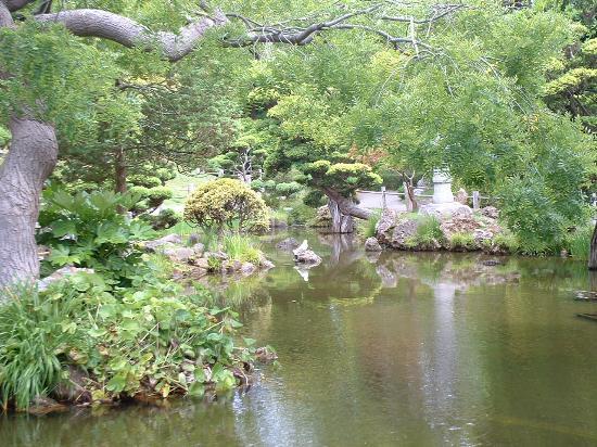 Golden Gate National Recreation Area : Japanese Garden