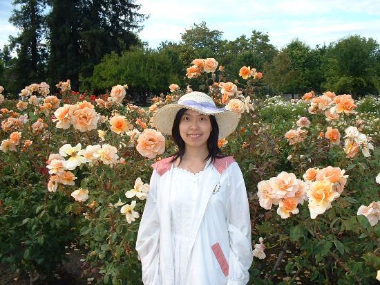 San Jose Municipal Rose Garden Picture Of Municipal Rose