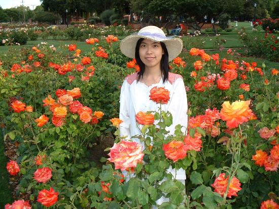 More Roses Picture Of Municipal Rose Garden San Jose Tripadvisor
