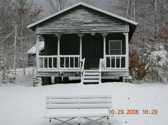 Allegany State Park: Snow covered cabin