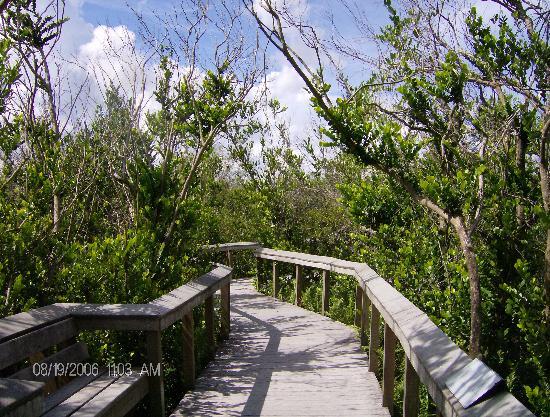 South Florida Photo