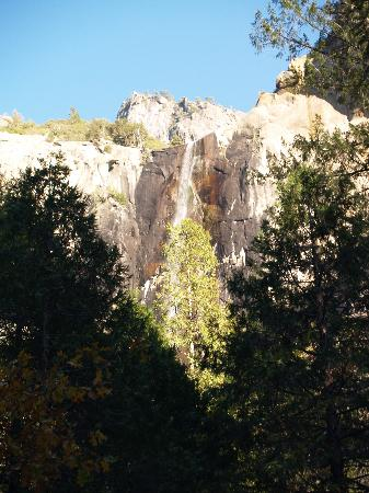 Cedar Lodge: Bridalveil Falls, Yosemite