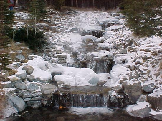 Alberta Foto
