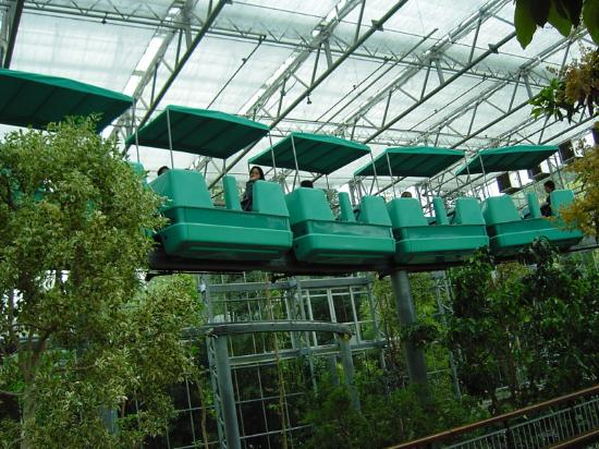 Gilroy, CA: Sky Train that goes thru the Monarch Gardens