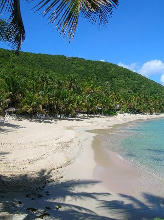 Peter Island Resort and Spa : Deadman's Beach