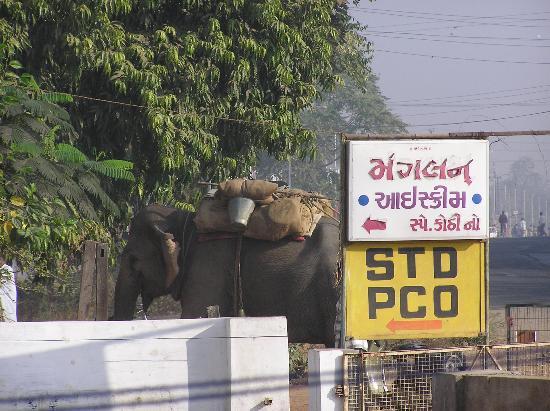 Gujarat-billede