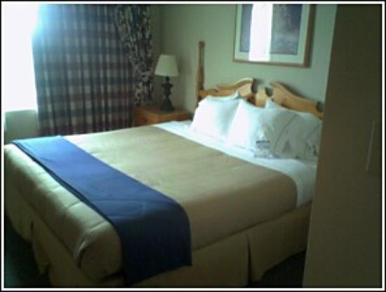 Holiday Inn Express Hotel & Suites Dallas-Addison Photo