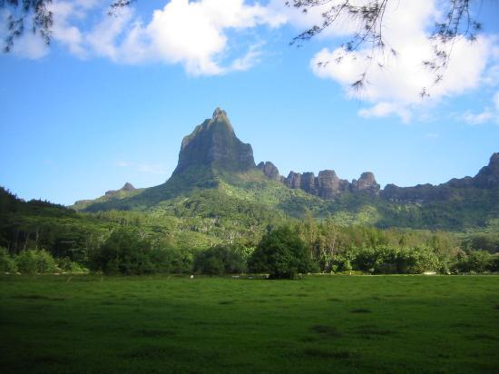о.Муреа, Французская Полинезия: Moorea