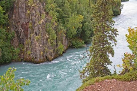 Kenai (AK) United States  City new picture : Kenai River Alaska, United States : Top Tips Before You Go ...