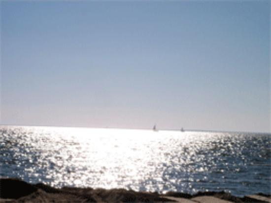 Fontainebleau State Park: Lake Ponchatrain is a popular place for sailboats.