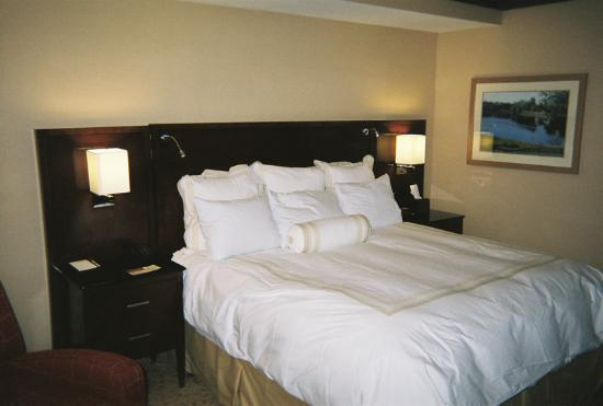 Coralville Marriott Hotel & Conference Center: VERY comfortable bed with nice lamps and adjustable reading lights.