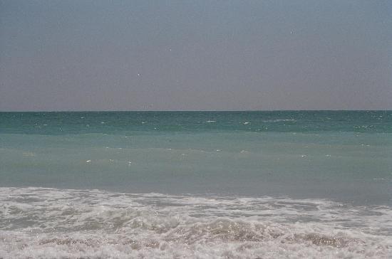 Venice, فلوريدا: Beautiful Caspersen Beach in May