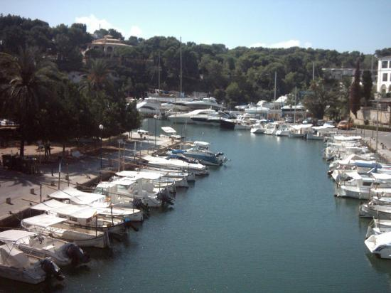 Monteverde Hotel: Part of the marina