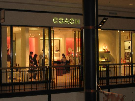 Coach Store Picture Of Mall Of America Bloomington