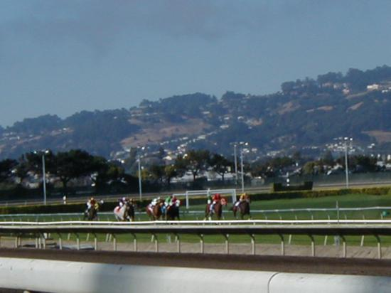Berkeley, CA: Golden Gate Fields Racetrack