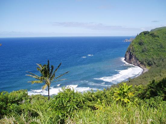 Île d'Hawaï, Hawaï : Pololu Valley Lookout
