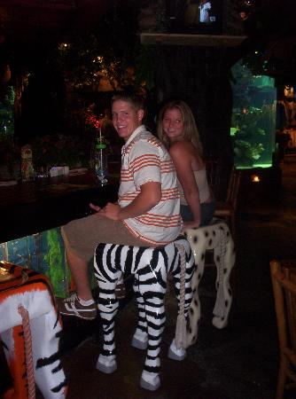 rainforest cafe cool bar stools - Cool Bar Stools