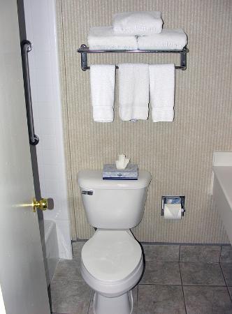 Quality Inn & Suites Oceanside لوحة
