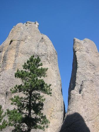 South Dakota: Needles Highway