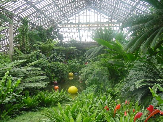 Garfield Park Conservatory: Chihuly Exhibit