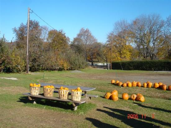 Melick's Town Farm