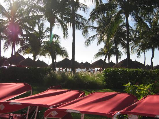 Aruba Marriott Resort & Stellaris Casino: View of Beach huts from pool
