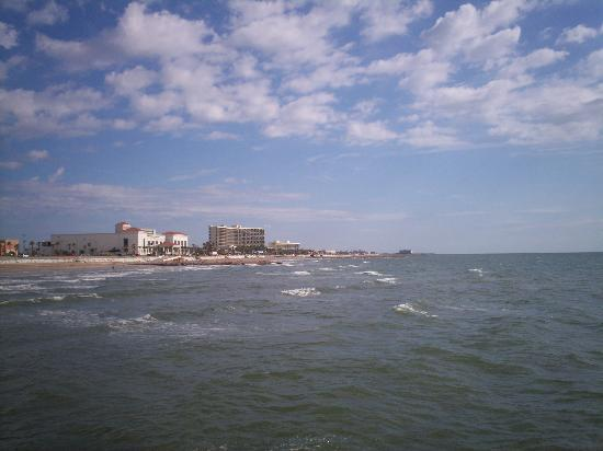 Galveston, TX: shore