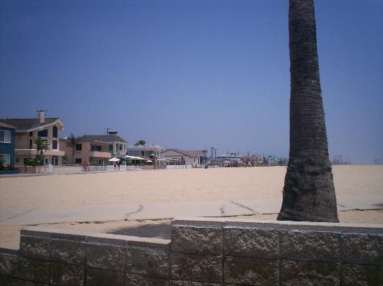 Newport Beach, Kaliforniya: beach view