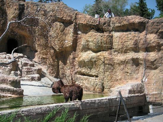 Assiniboine park zoo wedding
